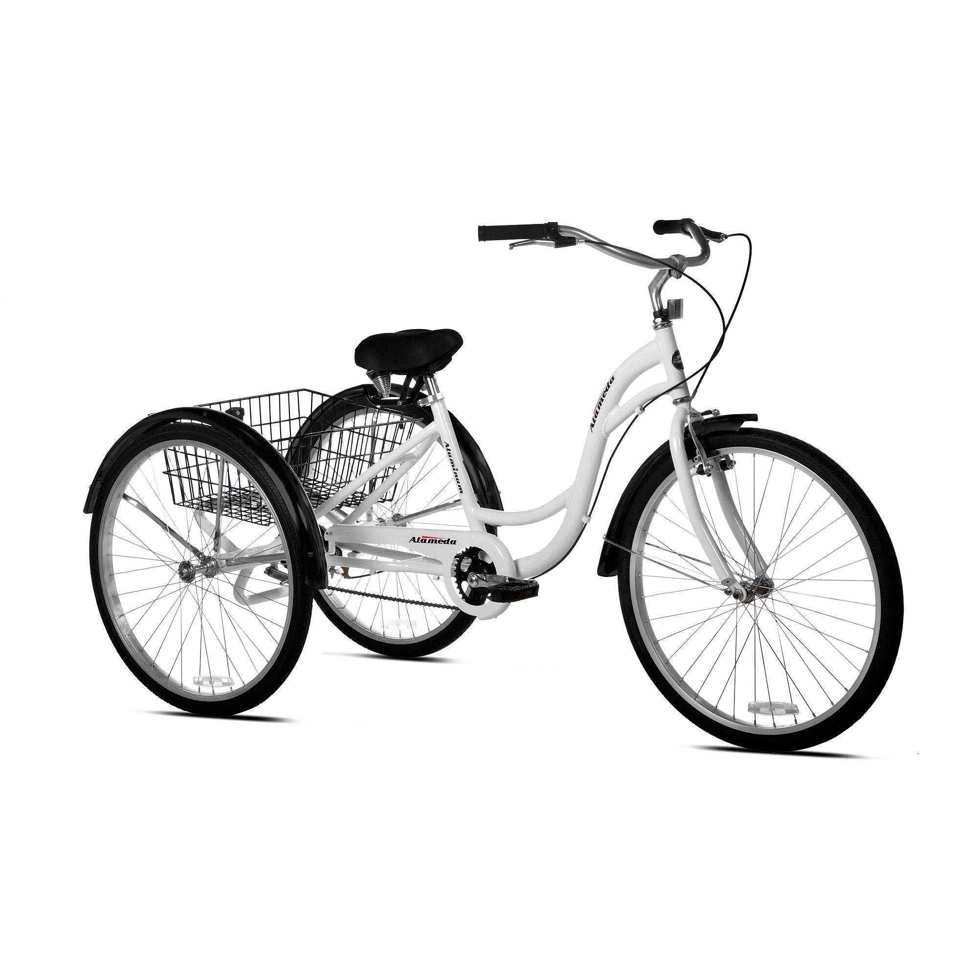 Gasoline Powered Gas Motor Kit For Kent Adult 3 Wheel